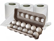 Toilet Paper and Eggs